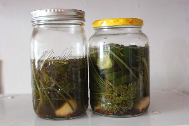 zero waste pickles
